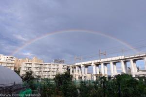 小雨の後の虹