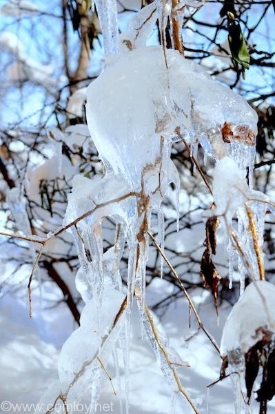 天然の氷の芸術