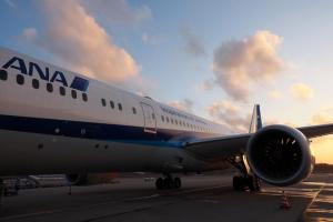 JA839A Boeing787-9 34529/310 2015/06