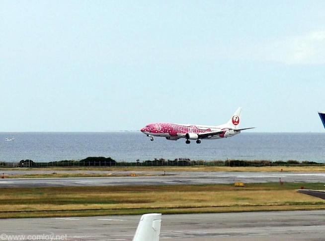 JTAのピンクのジンベイ機到着