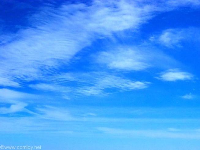 全日空 ANA464 沖縄 - 羽田