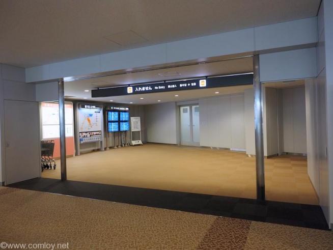 成田空港 第5サテライト 国内線乗継口