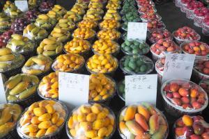 色とりどりのマンゴー