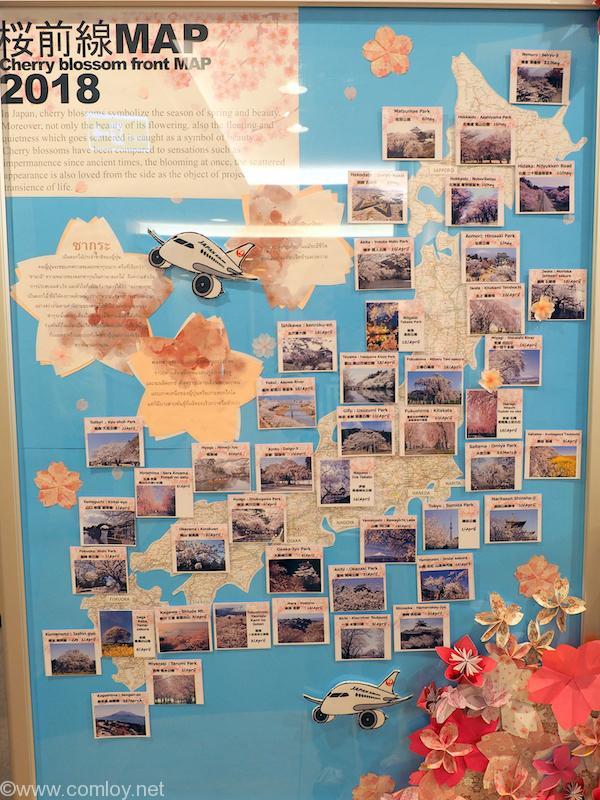 バンコク スワンナプーム空港 日本航空サクララウンジ 桜前線マップ