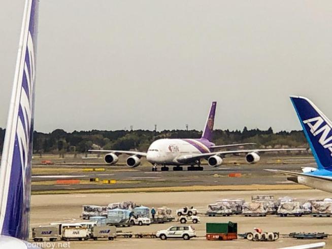 タイ航空 A380 @成田空港