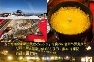 五ヶ瀬旅行Vol.1 日本航空 JAL623 羽田 - 熊本 搭乗記