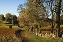 Bloody Lane Trail Approaches Roulette Farm, Antietam National Battlefield Park, Sharpsburg, Maryland, October 19 2009