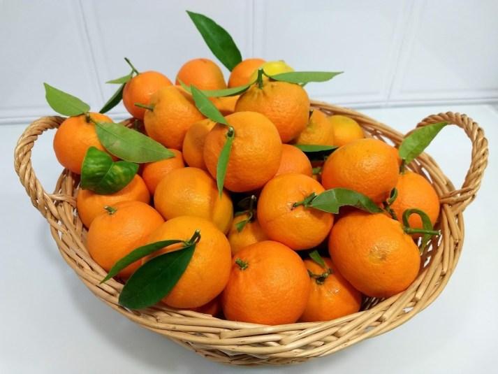 Mandarinas ecológicas recién cosechadas