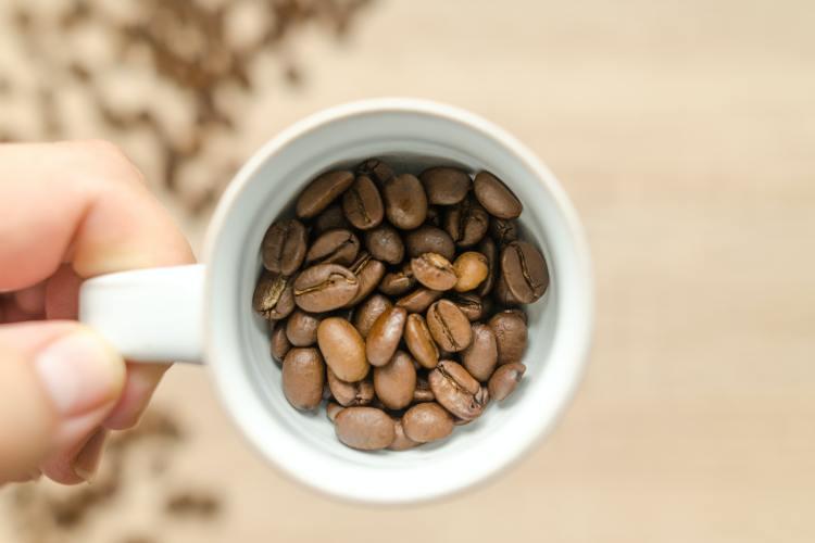 Preparación del café