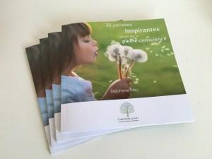 livre stephane nau 20 pensées pleine conscience