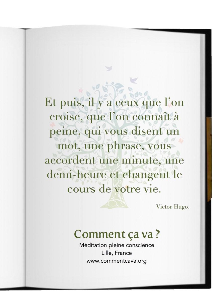 Etes Vous Pret A Rencontrer Par Victor Hugo Pleine Conscience Et