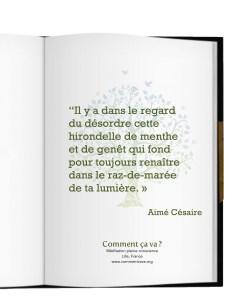regard-lumiere-amour-doute-citation-aime-cesaire-mindfulness-lille