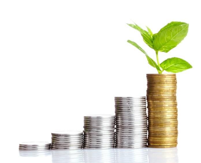 finacement participatif