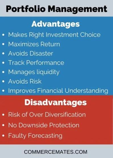 Advantages and Disadvantages of Portfolio Management