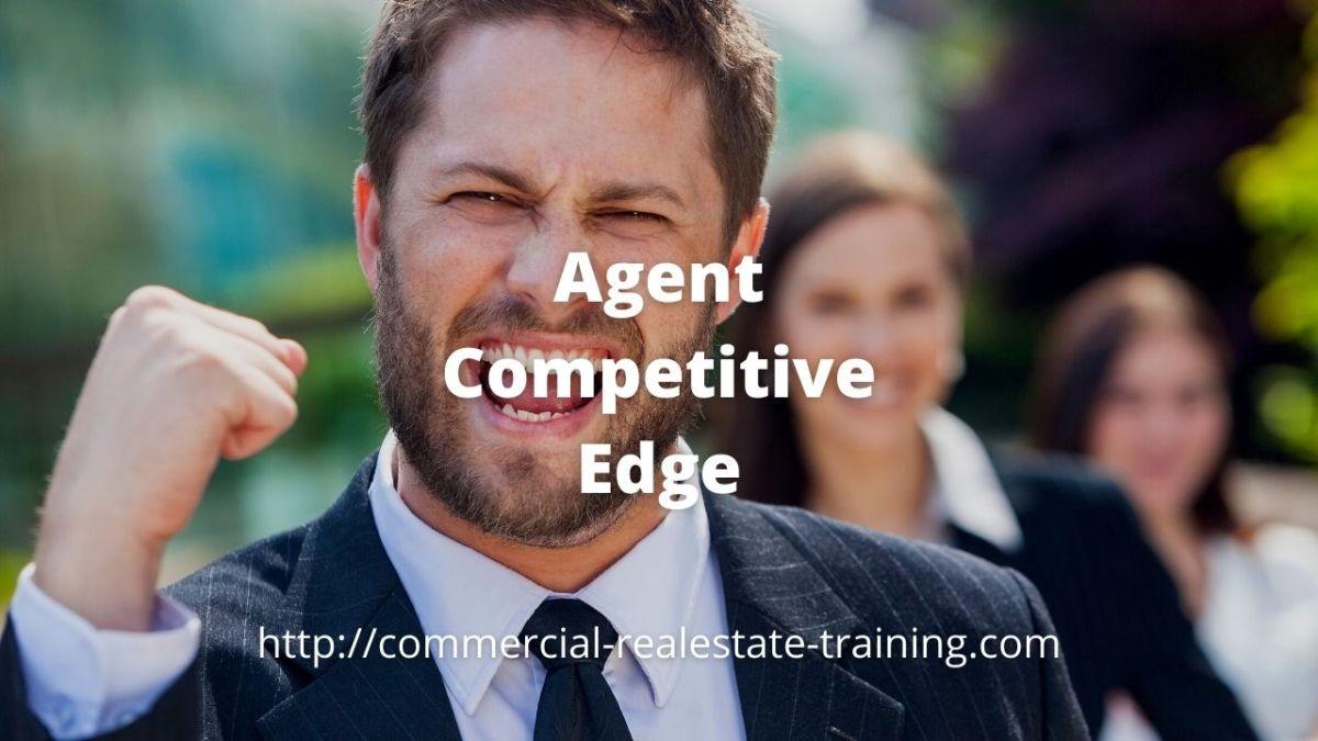 real estate agent success