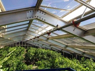 Portola-skylight-inspection-09