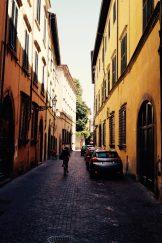 ruelle de Lucca