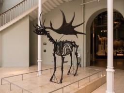 Entrée du musée national d'Ecosse