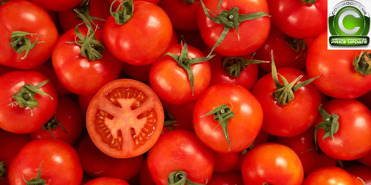 10-tomato.jpg