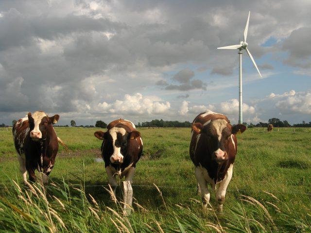 wind-power-future