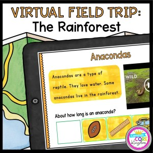 Virtual Field Trip to the Rainforest for 1st Grade in Google & Seesaw Format