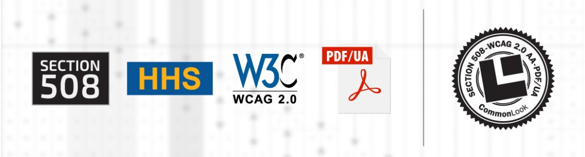 Graphic with multiple accessibility standard icons, including Section 508, WCAG 2,0, HHS, and PDF/UA