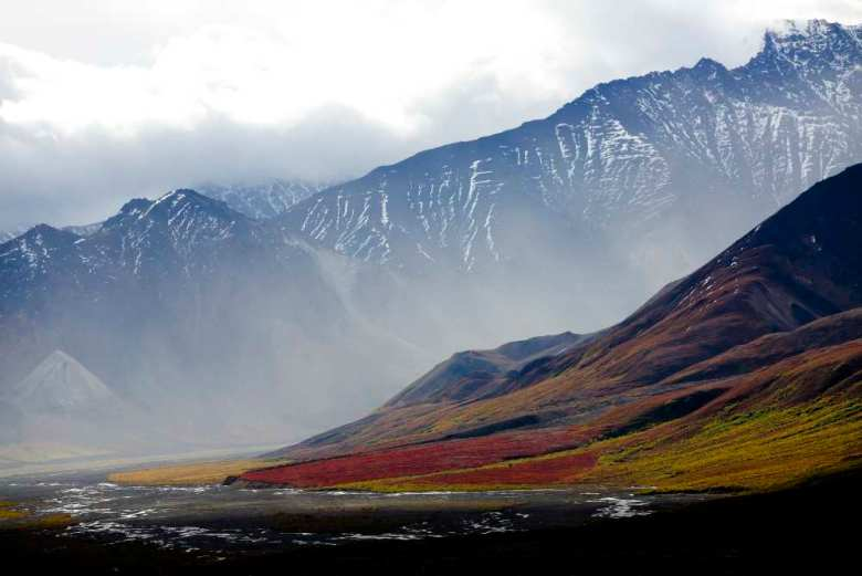 Alaskan tundra landscape photo showing low vegetation and large rocky mountains.