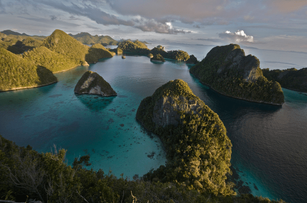 """""""These Raja Ampat Islands are thought to have the greatest marine diversity on earth. By exploring islands like these in the Malay Archipelago (modern day Indonesia), Alfred Russell Wallace (the """"father of biogeography"""") discovered the Wallace Line and crafted a theory of evolution by natural selection. Biogeography can play a similarly important role in the search for underlying drivers of economic development.""""  Author: Jonathan Chase"""