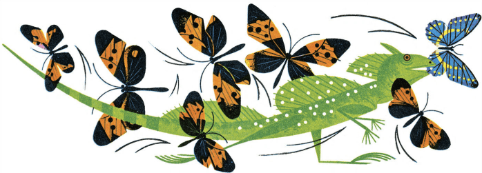 Plate from The Animal Kingdom, by Charley Harper, 1967.