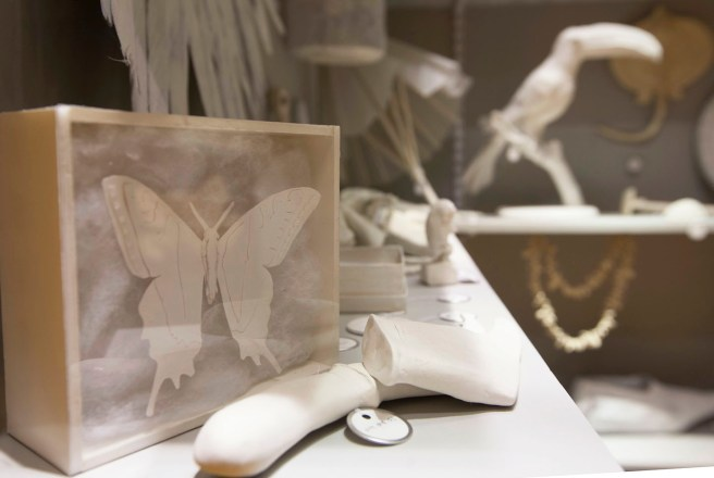 Replicas of lost specimens and artifacts at the Jenks Museum represented in ghostly white.