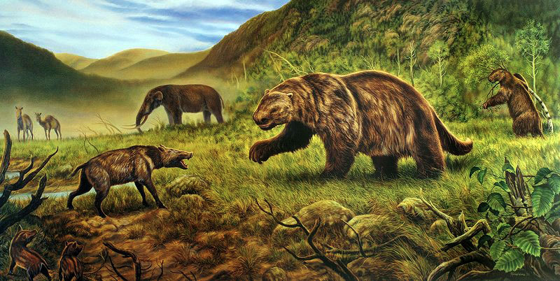 Ground sloths and an American mastodon can be seen in this illustration of megafauna