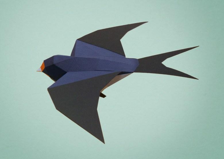 Golondrina tijerita / Barn swallow (Hirondo rustica) by Estudio Guardabosques.
