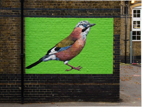 """""""The jay"""" by ATM is found in South Acton London W3"""