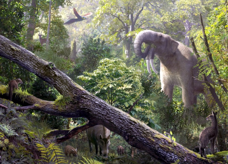 Prehistoric animals in Spain during the Miocene