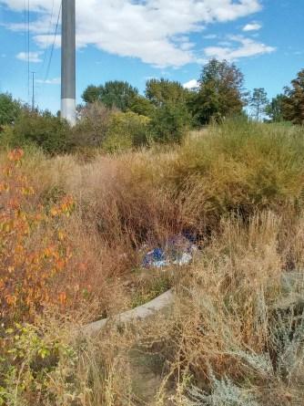 Trash interfering nature