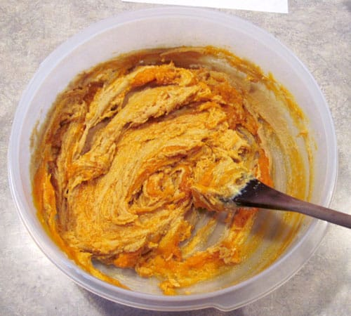 Mixing pumpkin into the pumpkin oatmeal cookies