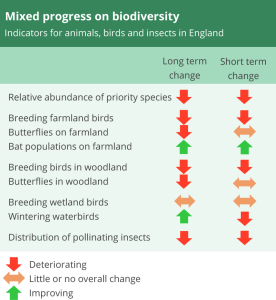 Mixed progress on diversity: Indicators for animals, birds and insects in England