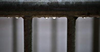 Rain drops on a railing