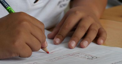 Special educational needs and disability support: Rescuing the reforms
