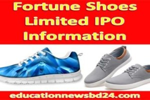 Fortune Shoes Limited IPO Information