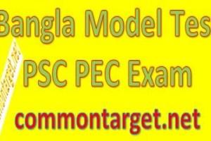 Bangla Model Test PSC PEC