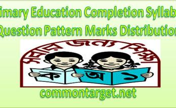 Primary Education Completion Syllabus 2020