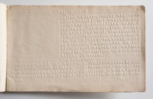 This book has singled-sided right hand numbered reading pages. The left hand pages are the reverse of the embossed writing and illustrations of the preceding right hand page and are not numbered. This book is open on page 4, the right hand page. The unnumbered left hand page is not numbered). The left hand side is stamped with reversed embossed writing and an illustration of a robin redbreast from page 3. The right page includes an embossed illustration of a swallow, and embossed text. The illustration is set in a box on the left hand side of the page, vertically (top to bottom) stretching from near the top of the page to a third of the way to the bottom, and horizontally (left to right) about a third of the width of the page. The text is a version of the Roman alphabet: all the letters are upper case. The text reads: THE SWALLOW. [New paragraph] OF THE SWALLOW THERE ARE NUMEROUS SPECIES, BUT THE GENERAL APPEARANCE OF ALL ARE NEARLY THE SAME. THEIR BILLS ARE SMALL, BROAD AT THE BENT, AND SLIGHTLY CURVED; THE WINGS ARE LONG, & THE TAIL FORKED. THEY ARE BIRDS OF PASSAGE, AND MIGRATE, ON THE APPROACH OF WINTER TO WARMER CLIMATES, REVISITING US WITH THE RETURN OF SPRING. [New heading] THE BLACKBIRD. [New paragraph] THE PLUMAGE OF THIS BIRD IS ALTOGETHER BLACK, AND FROM THIS CIRCUMSTANCE IT DERIVES ITS NAME. ITS TUNES ARE LOUD, CLEAR, AND MELODIUS, & WHEN TAMED YOUNG, IT MAY BE TAUGHT TO WHISTLE A VARIETY OF TUNES. [End page]. [End description].