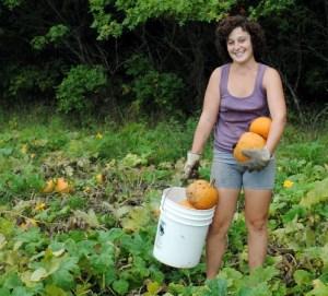 WinterLuxuryPie_Pumpkin_Harvest_Lyndsey-1385-550-450-100