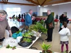 Bourse aux plantes - avril