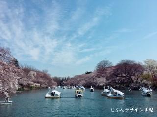 桜開花したので吉祥寺の井の頭恩賜公園にさんぽに行ってきたよ!