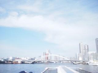 水上バスに乗って桜を堪能できる「お花見特別ダイヤ」日の出桟橋〜浅草
