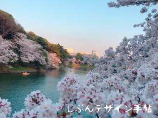 千鳥ヶ淵桜まつりの混雑状況は?ボートの待ち時間とライトアップは?
