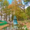 あけぼの子どもの森公園の紅葉の時期に行ってきた!【画像あり】