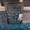 ウサギノネドコ京都店のカフェのランチメニューと鉱物料理レポ!